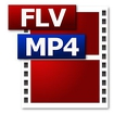 FLV HD MP4 Video Player Icon Image