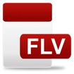 FLV Video Player Icon Image
