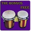 Bongo drum Icon Image