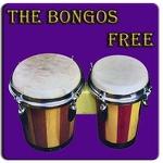 Bongo drum APK