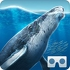Sea World VR2 APK