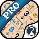 Okey Pro APK