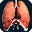 Organs 3D (Anatomy) icon