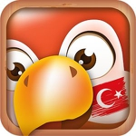 Learn Turkish APK