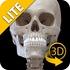 Skeletal System 3D Anatomy Lt APK