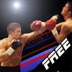 Dual Boxing Icon Image