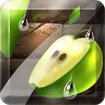 Fruit Slice Icon Image
