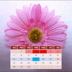 My Menstrual Diary APK