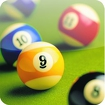 Pool Billiards Pro Icon Image