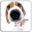 DOG LICKS SCREEN LWP FREE Icon Image