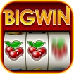 Big Win Slots™ - Slot Machines Icon Image