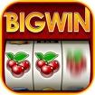 Big Win Slots™ - Slot Machines Icon Image