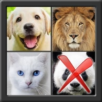 4 Pics 1 Different APK