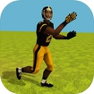 Football Simulator Rampage 3D icon