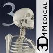 Essential Skeleton 3 icon