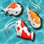 Feed My Fish APK