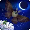 Flutter: Starlight 1.47