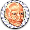 Speed Anatomy Quiz Free Icon Image