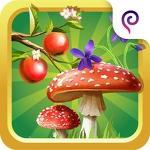 Что растёт в лесу детская игра APK