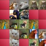 Memory Game - Animals APK