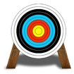 Archer bow shooting Icon Image