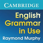 English Grammar in Use APK
