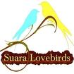 Suara Lovebirds Ringtones Icon Image
